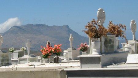 Polyrhinia cemetery